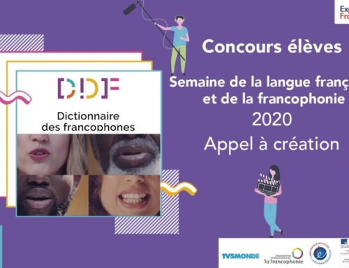 Mettre des expressions francophones sous le feu des projecteurs : la classe de CM1D relève le défi !